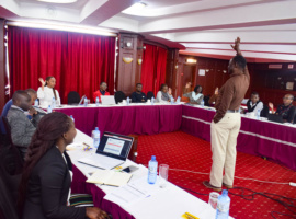 Importance of group mentorship in the EoC Mentorship Programme