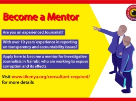 Journalists Mentors Wanted